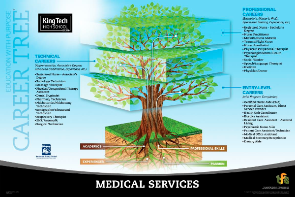 Medical Services career tree